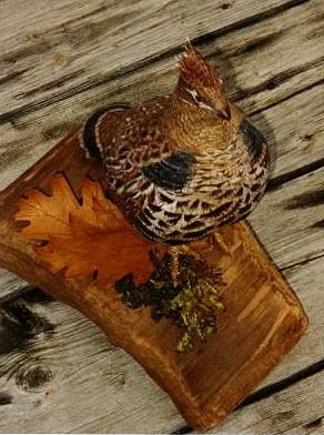 Song Birds and Carving by Carol Turner