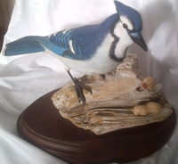 Blue Jay Carving